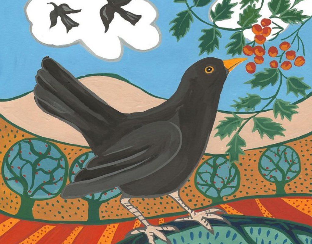 Blackbird reduced